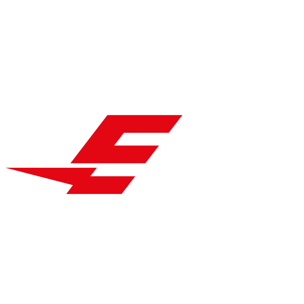 eRace concept